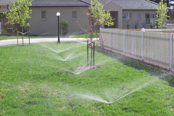 Domestic Irrigation
